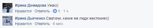 Соцсети поразило равнодушие очевидцев ДТП в Николаеве: появились фото и подробности (2)