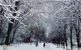 Київ накрив потужний снігопад, на дорогах колапс: перші яскраві фото та відео