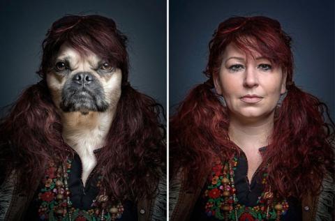 Собаки в образе своих владельцев (8)