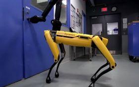 В Boston Dynamics познущалися над робособакою: опубліковано відео