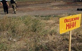 Німеччина виділила ще 500 тисяч євро на інформування про небезпеку мін у зоні АТО