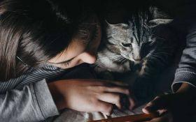 Домашние животные укрепляют людям иммунитет к коронавирусу - наблюдение ученых