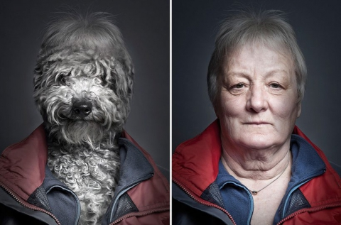 Собаки в образе своих владельцев (7)