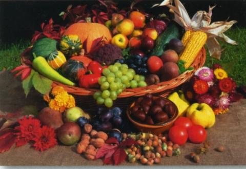 Сьогодні - Всесвітній день продовольства