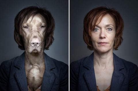 Собаки в образе своих владельцев (1)