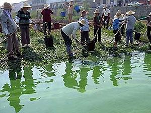 Россия  направила Китаю ноту из-за сокрытия утечки химикатов
