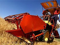 Кабмин обещает увеличить помощь аграриям