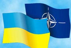 Кабмин выделит 30 миллионов, чтобы украинцы захотели в НАТО