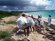 С морских берегов собрали почти 3 тысячи тонн мусора