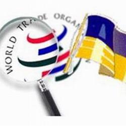 У Європі кажуть: Україна відчує всю радість СОТ тільки з Росією