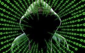 В мире зафиксировали мощнейшую кибератаку