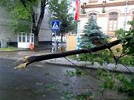 На ликвидации последствий урагана во Львове задействованы 120 спасателей