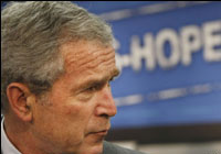 Буш надеется найти общий язык с Медведевым