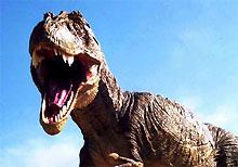 Куры произошли от тираннозавров, выяснили ученые