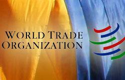 Зубков намерен обсудить в Киеве последствия вступления Украины в ВТО