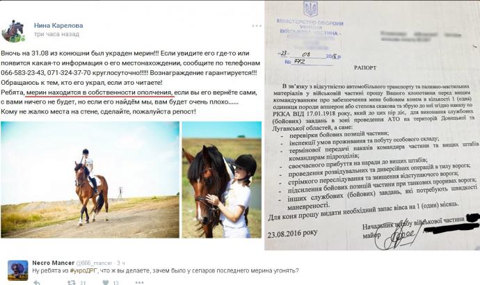 Історія з бойовим конем для бійця АТО отримала несподіване продовження (1)
