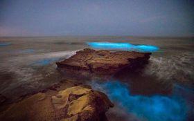 У Каліфорнії несподівано засвітився океан: опубліковані яскраві фото та відео