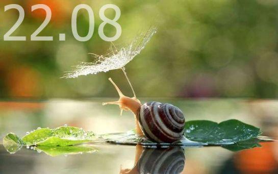 Прогноз погоди в Україні на 22 серпня