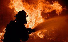 У Каліфорнії евакуювали 90 тисяч людей через масштабні пожежі