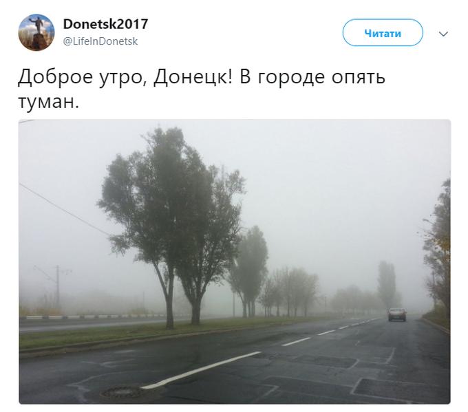Украину окутало туманом: опубликованы фото (2)