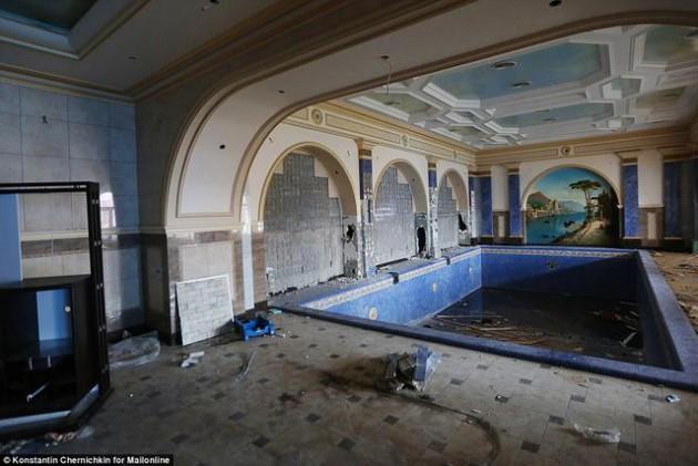 На Западе появились впечатляющие фото разграбленного дворца Пшонки (8)