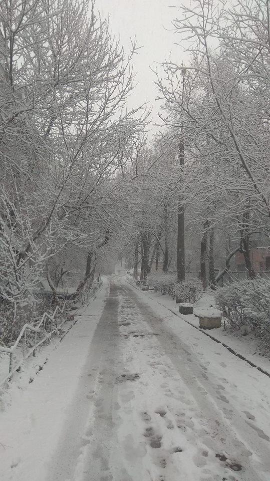 Київ накрив потужний снігопад: з'явилися фото і відео (1)