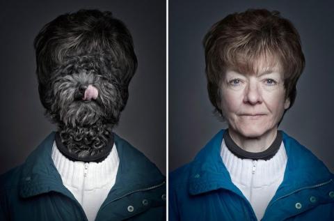 Собаки в образе своих владельцев (4)