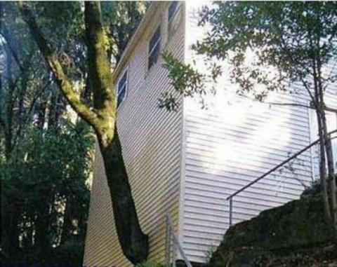 Найбезглуздіші архітектурні казуси, які викликають подив (17 фото) (12)