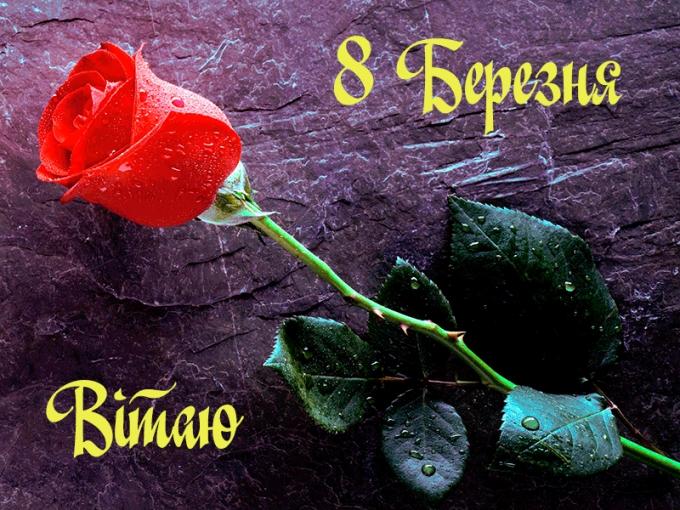 Оригинальные и красивые поздравления с 8 марта - стихи, картинки и проза (7)