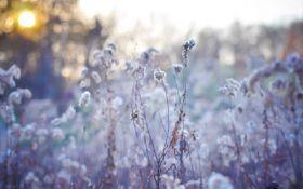 В оккупированном Крыму выпал первый снег - впечатляющие фото