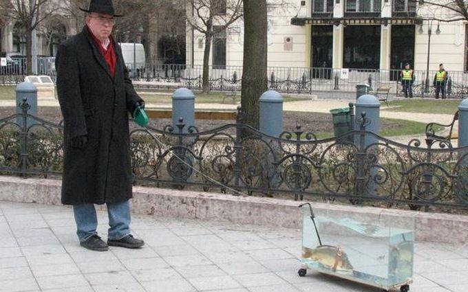 Вигулюють іграшкових собак і курей: іспанці знаходять смішні приводи вийти на вулицю під час карантину
