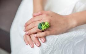 Американка изобрела живые эко-украшения: опубликованы фото