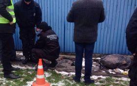 Перестрелка с бандитами в Киеве: появились фото важной находки