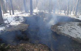 Під Львовом спалили музей УПА: опубліковані фото