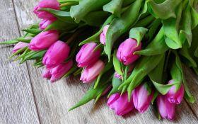 Лучшие поздравления с 8 марта - красивые стихи и яркие картинки