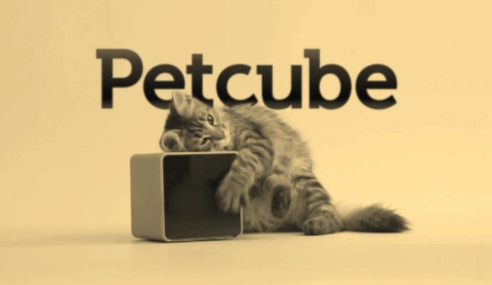 Petcube представил на CES 2016 облачный сервис Petcube Protect