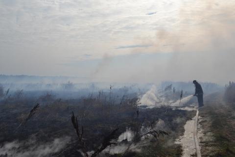 У Київській області горить 15 га торфовищ (6 фото) (6)