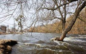 Мощный потоп на Закарпатье: опубликовано новое зрелищное видео