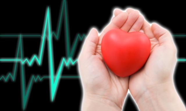 Ученые знают, как восстановить сердце после инфаркта