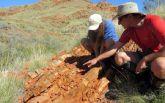 Ученые нашли следы древнейшей жизни на Земле