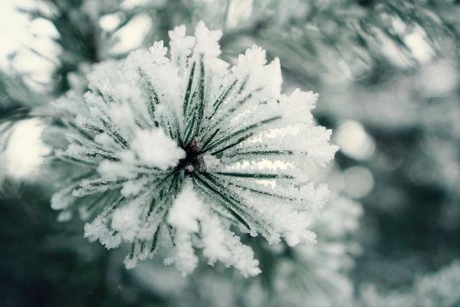 Погода на сьогодні: в Україні сніг, температура від 0 до +8