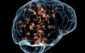 Вчені виявили можливу причину розсіяного склерозу та способи боротьби з ним