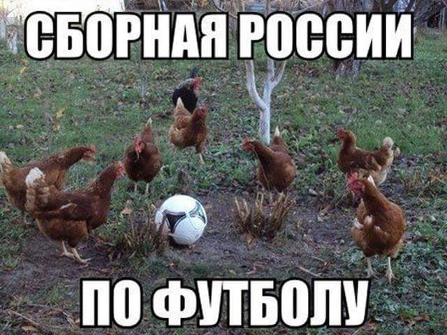 В соцсетях высмеяли вылет России с Евро-2016: опубликованы фотожабы (17)