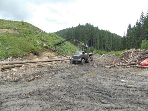 В Карпатах масштабная экологическая катастрофа: опубликованы фото (5)