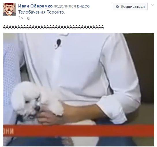 Квартирний скандал Лещенка: соцмережі підірвало смішне відео з собакою нардепа (2)