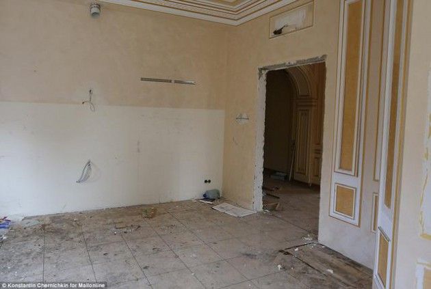 На Западе появились впечатляющие фото разграбленного дворца Пшонки (6)