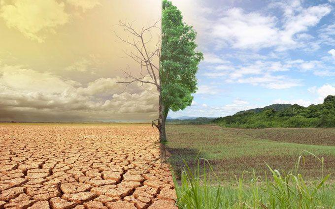 Как изменение климата влияет на погоду в Украине