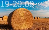 Прогноз погоди на вихідні дні в Україні - 19-20 серпня