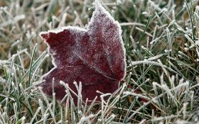 В Украину идут первые заморозки: появился прогноз погоды