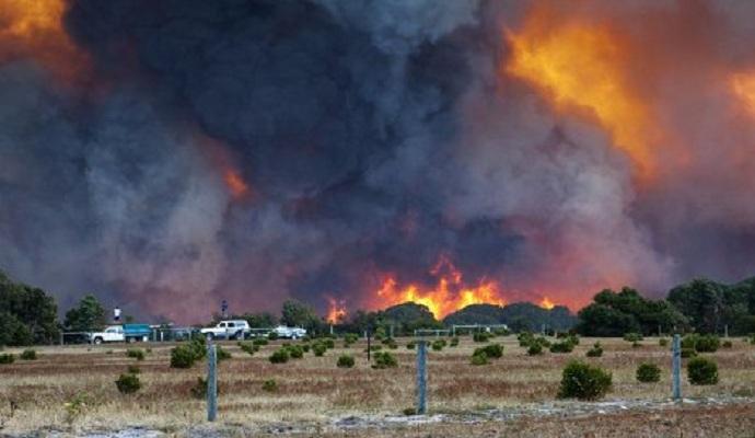 Пожарные Австралии продолжают бороться с лесными пожарами